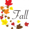 Ready for Fall?